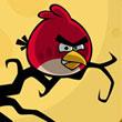 Angry Birds Las Diferencias