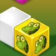 Animal Cubes Aventura