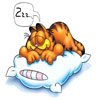 Despertando A Garfield Por Las Malas