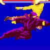 Ninja Super Combate en el Aire