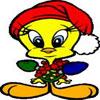 Piolin Decorando La Navidad