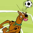 Entrenimiento de Footbal con Scooby