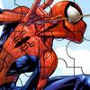Spiderman Recolector de Ropa