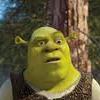 Puzzle de Fichas de Shrek 2