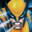 Wolverine Busca y Destruye