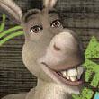 Memo Shrek