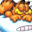 El Catch De Garfield