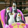 Carrera En El Zoológico Con Los Pinguinos De Madagascar