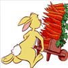 Cosechando Zanahorias Con Rabit